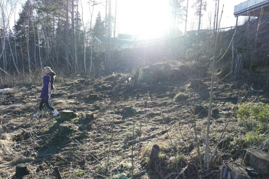 Skjermbilde 2015-01-11 kl. 23.24.07